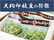 天狗印枝豆の特徴