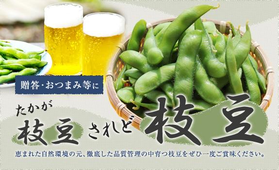 贈答・おつまみ等に「たかが枝豆、されど枝豆」恵まれた自然環境の元、徹底した品質管理の中育つ枝豆をぜひ一度ご賞味ください。